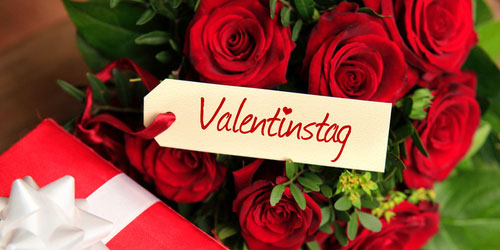VALENTINES DAY - HOTEL HAUS AM ZOO IN DUSSELDORF - packages